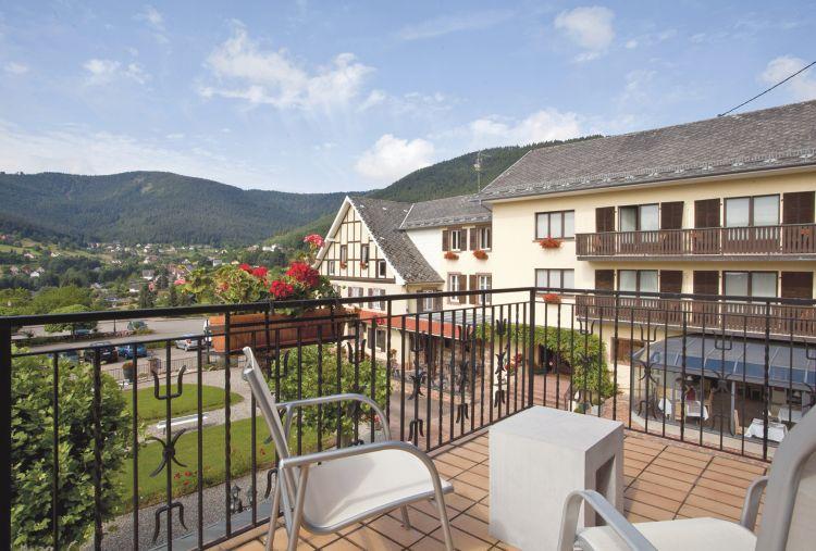 Hotel Restaurant Du Parc Wangenbourg
